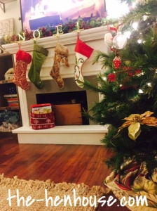 stockings-henhouse